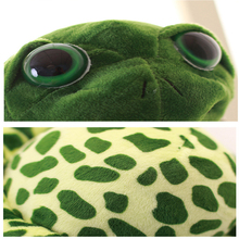 Cute Plush Turtle with Big Eyes