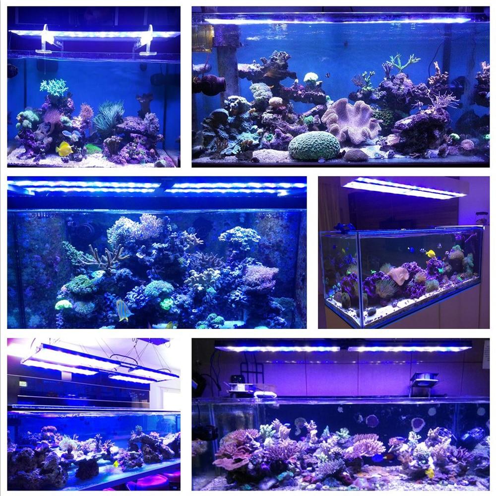 dsuny led aquarium lighting marine reef lpssps tank aquario lamp sunrise sunset pecera acuario verlichting zeeaquarium light in lightings from home