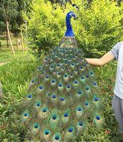 Большой см 120 см Красивые перья Павлин птица МОДЕЛЬ пены и Павлин Ремесленная, домашний сад украшения подарок a2577