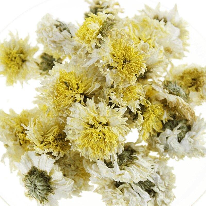 хуаншань Белый Хризантемы фото