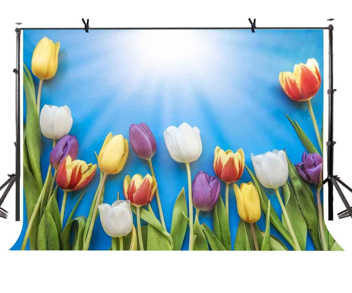 150x220cm Tulip Backdrop Sunshine Blue Photography Background for Camera Photo Props
