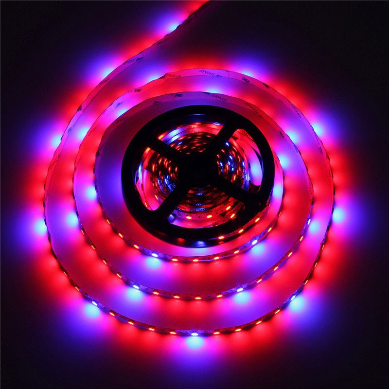 5050 1M 2M 3M 5M Led Rostlina roste Strip Light Light Vodotěsná Flexibilní pásek Light Light 5 Red 1 Blue Aquarium Hydroponic Plant Grow