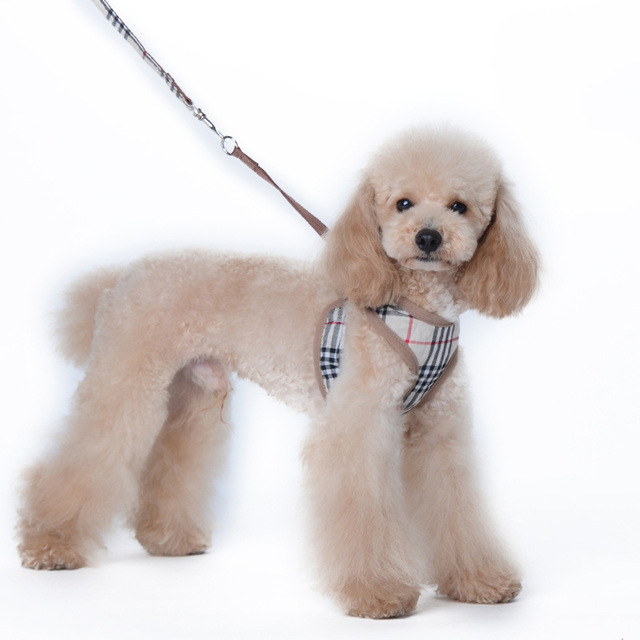 Cute Pattern Puppy Cat Pet Small Dog Harness Vest Leash Set For