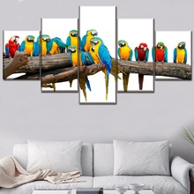 Canvas HD Prints Paintings Home Decor Framework 5 Piece Colorful Animal Macaw Posters For Living Room Wall Art Modular Pictures