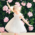 New Girls Summer Dress 2017 Kids Fashion Lace Dress Floral Children Mesh Dresses Cotton Lining Toddler Ball Gown Dress,3-14Y