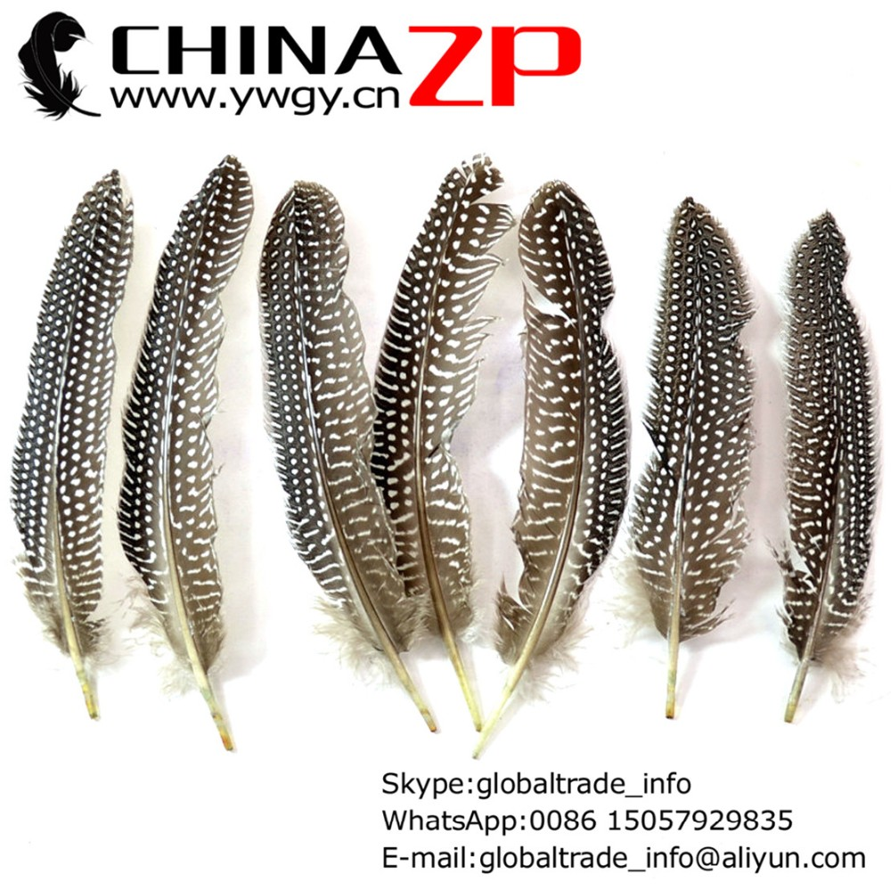7-9 Strung of European Bronze Schlappen..You Will Recieve 6 Of Feathers.