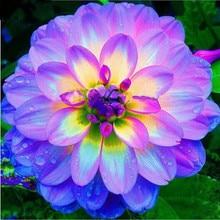 Diamond Embroidery Diy Painting Purple Beautiful Flowers Cross Stitch Rhinestone Decor Mosaic