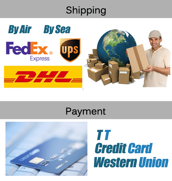 Ship and Pay