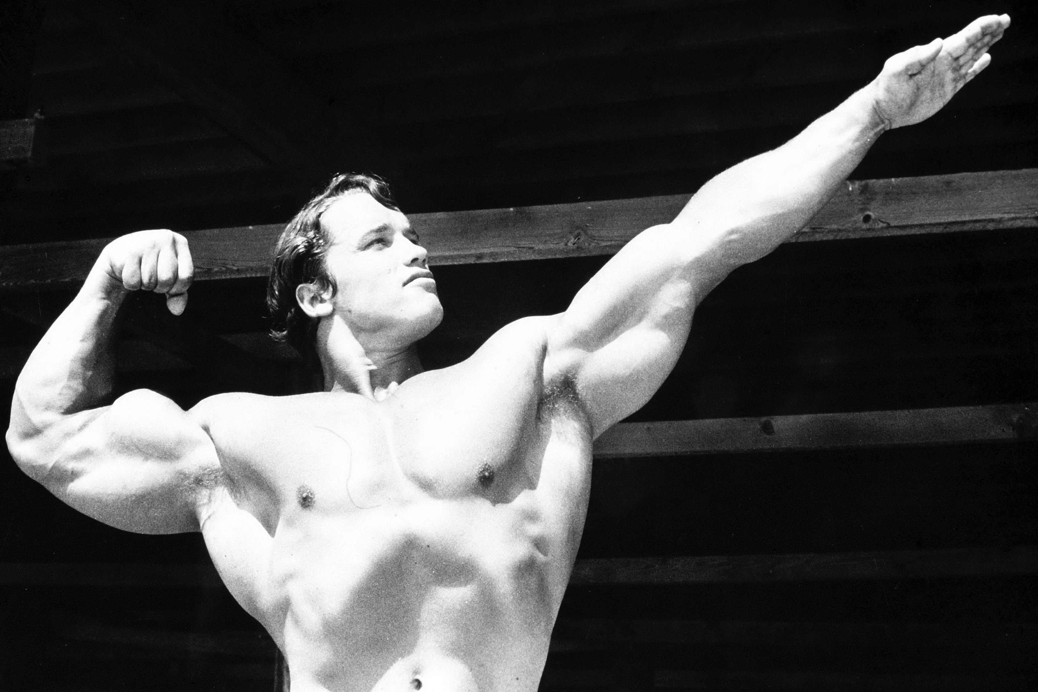 Conquer Arnold Schwarzenegger Young Bodybuilder Art Silk Poster 13x24 inch 68