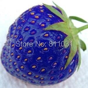 Горячая распродажа 100 шт./пакет голубой клубника редкие семена овощных культур бонсай растение домашний сад бесплатная доставка
