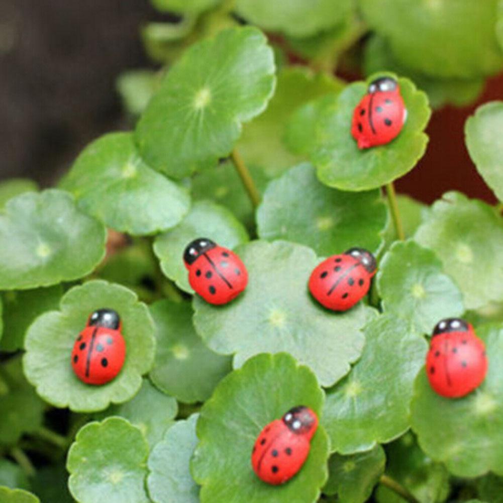 5pcs!!!!Garden Ornaments Lifelike Ladybug Faceplate Micro landscape Ladybird lady beetle ...