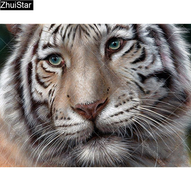Zhui Star Full Square Drill 5d Diy Diamond Painting a Pattern Tiger 3d Embroidery Cross Stitch Rhinestone Mosaic Decor Cj54 Home & Garden