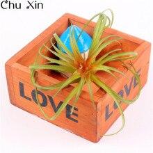 mini planta de flor decorativa artificial carnosidad aire hierba colores decoracin balcn casa