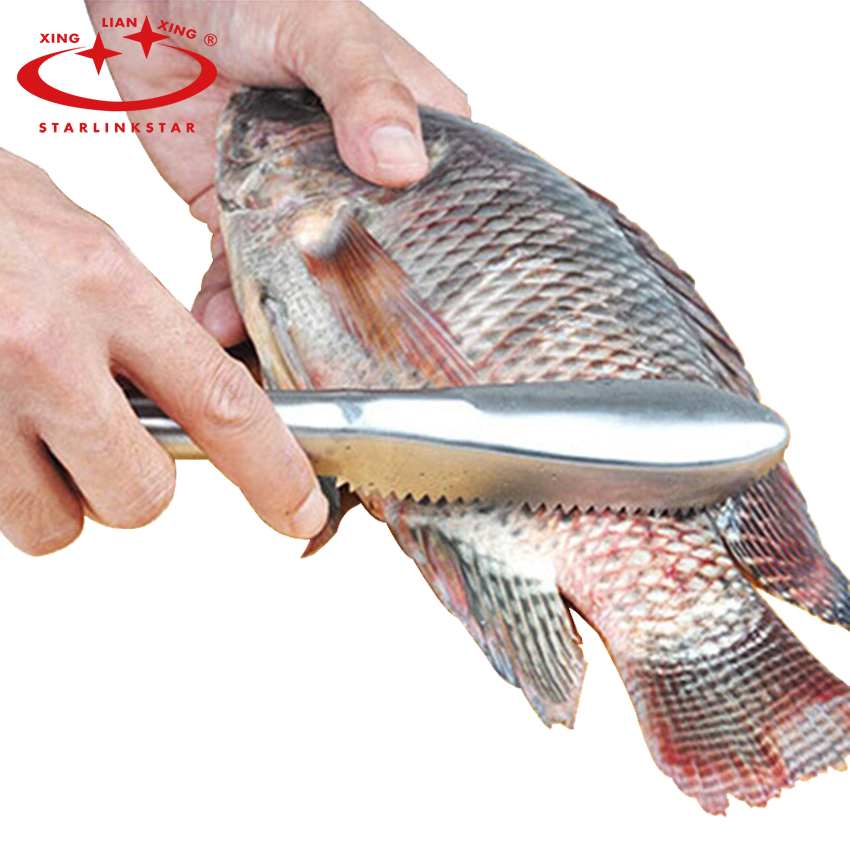 Fish cleaning knife skin cleansing brush cooking tools for Fish scaling knife