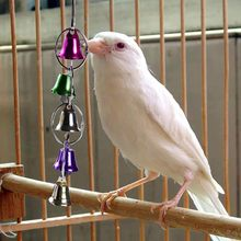 Pet Toy Hanging Colour Swing Rings Bell Strings Swing Cage Toy Pet Bird Parrot Parakeet Cockatiels Cockatoo Chew Toy(China)