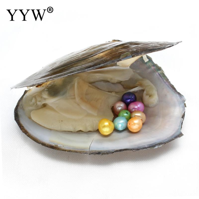 6-7mm Vacuum-pack Oyster Freshwater Pearls Mussel Shell with Pearl Inside Dyed Beads Different Colors of Pearl Mysterious Gift