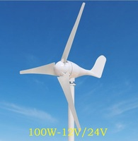 WWS ENERGY Wind Power Generator 100W 12V Or 24V Include Generator Controller 3 Blades Fit For