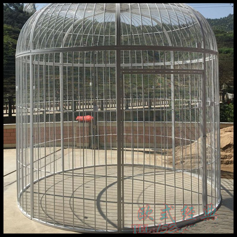ironbirdcage-S0295