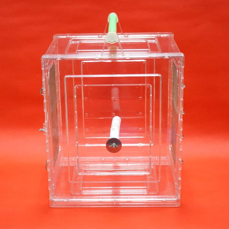 Cage portative de transporteur d'oiseau de perroquet résistante aux morsures Durable appropriée aux perroquets de petite taille - 4