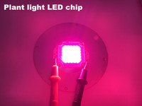 led plant growth lamp module cob diode led bulb 620 660nm red 450 455nm blue custom products