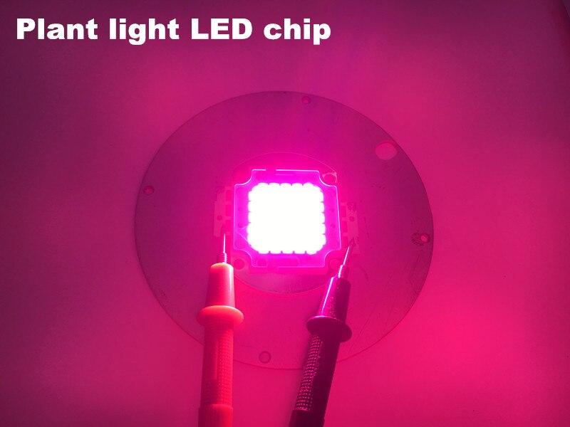 Led ampoule de diode led de module de lampe de croissance d'usine 620-660nm rouge 450-455nm bleu produits personnalisés