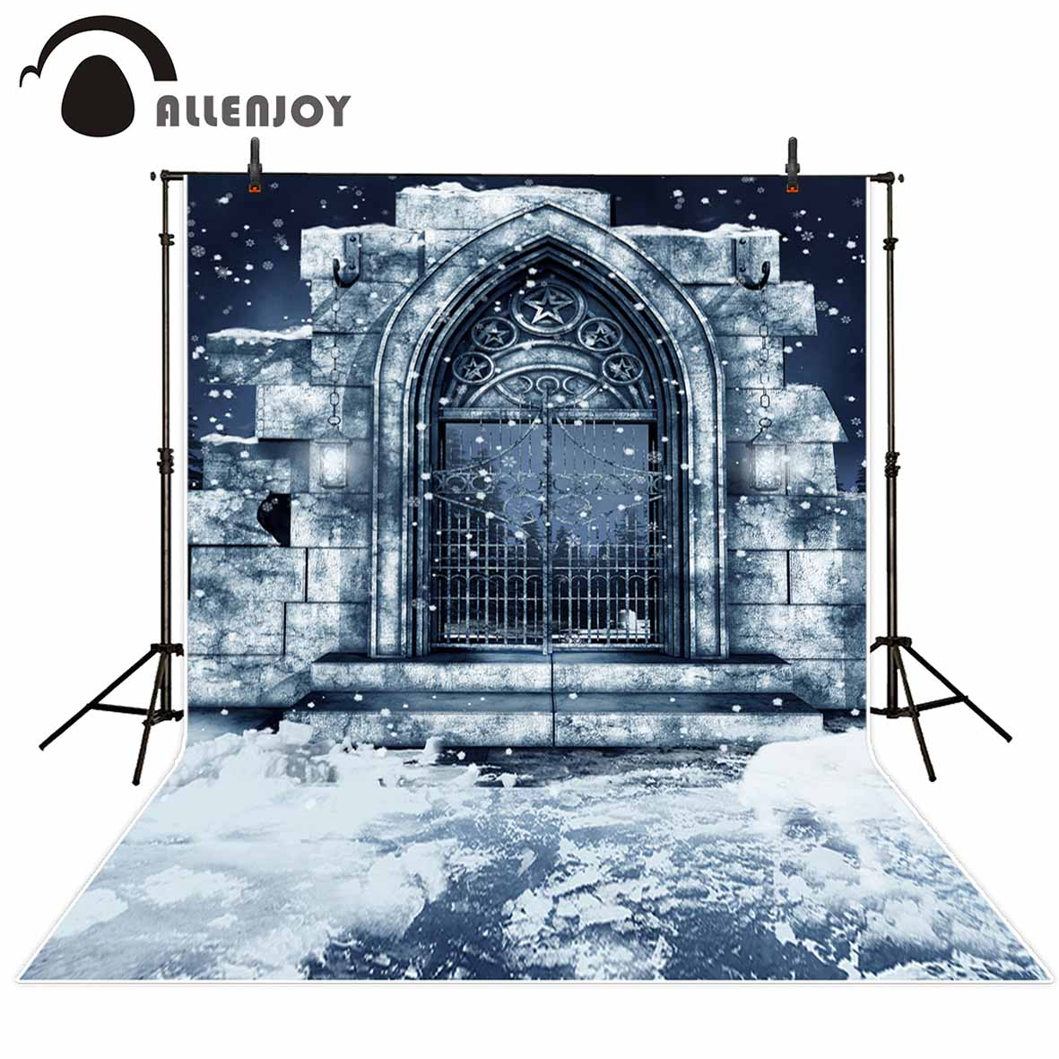 Allenjoy photographic background Cold Iron gate Arches Winter decay backdrop photocall professional customize vintage background