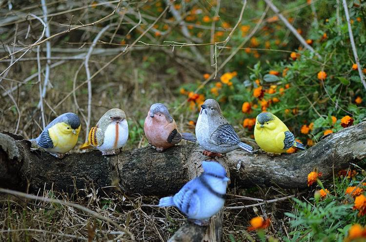 Us 149 89 30 Off 5set Lot Playful Magpie Birds Statue Outdoor Artificial Bird Resin 6 Pieces A Set Garden Decor Home Art In Figurines