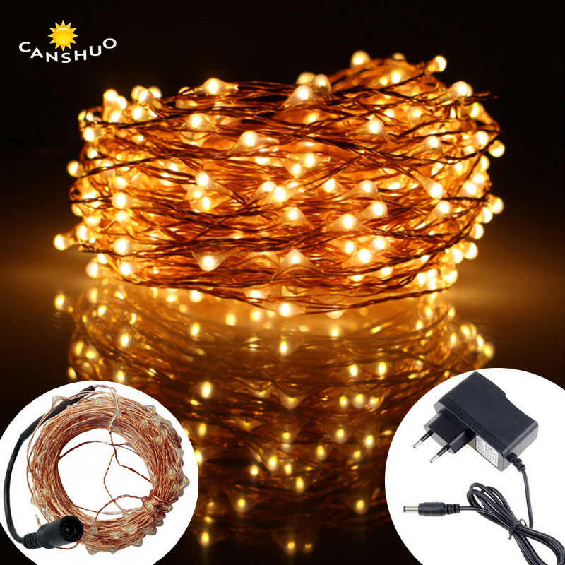 DC12V 10M/20M/30M/50M Led Silver/Copper Wire string light LED String Fairy Lights with Power Adapter for Christmas wedding decor