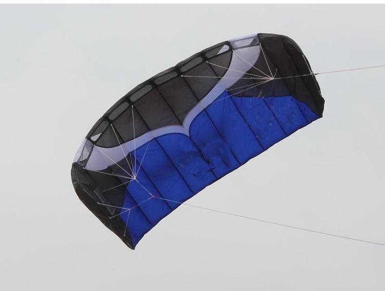 Cerf-volant Parafoil double ligne professionnel 2m avec ligne de tresse de voile Kitesurf plage de sport - 3
