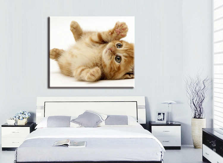 1 pieces / set Modern Animals Pet Cat Quotes Canvas Art Print Poster Wall Picture Kids Baby Room Decor Painting