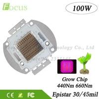 1 Pcs High Power 100W LED Grow Chip Red 660nm Blue 440nm Mitsuhiro 100 Watt 24