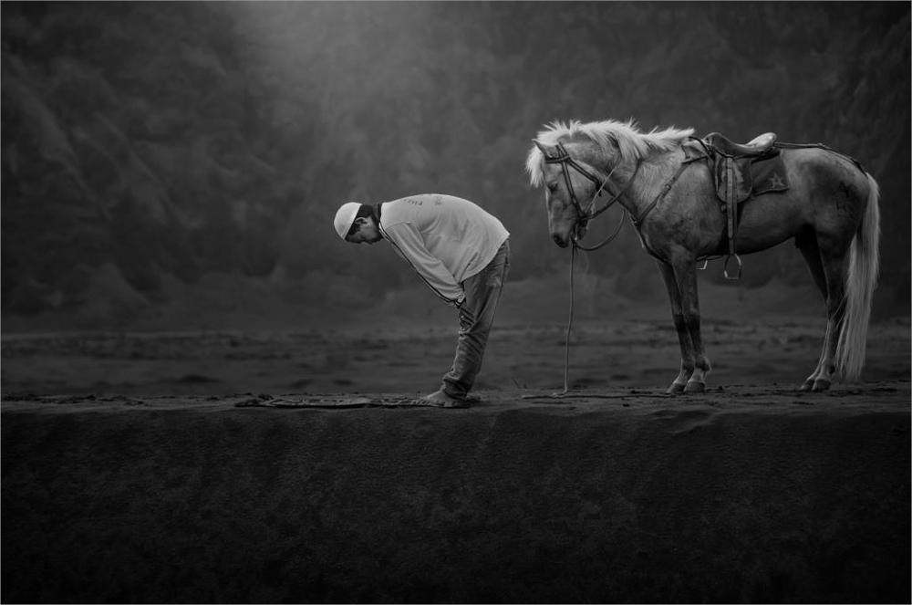 Living room home wall decoration fabric poster Horses animals men praying Islam Indonesia greyscale On Canvas Painting Printed
