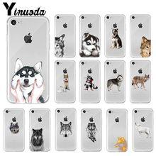 Yinuoda Animal Wolf Husky Dog Puppy TPU Soft High Quality Phone Case fo