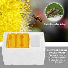 Улей Пчеловодство улейная коробка Урожай улей королева полинация пчеловодства для пчеловодства вязки пчеловода королева резерв инструмент пчеловода