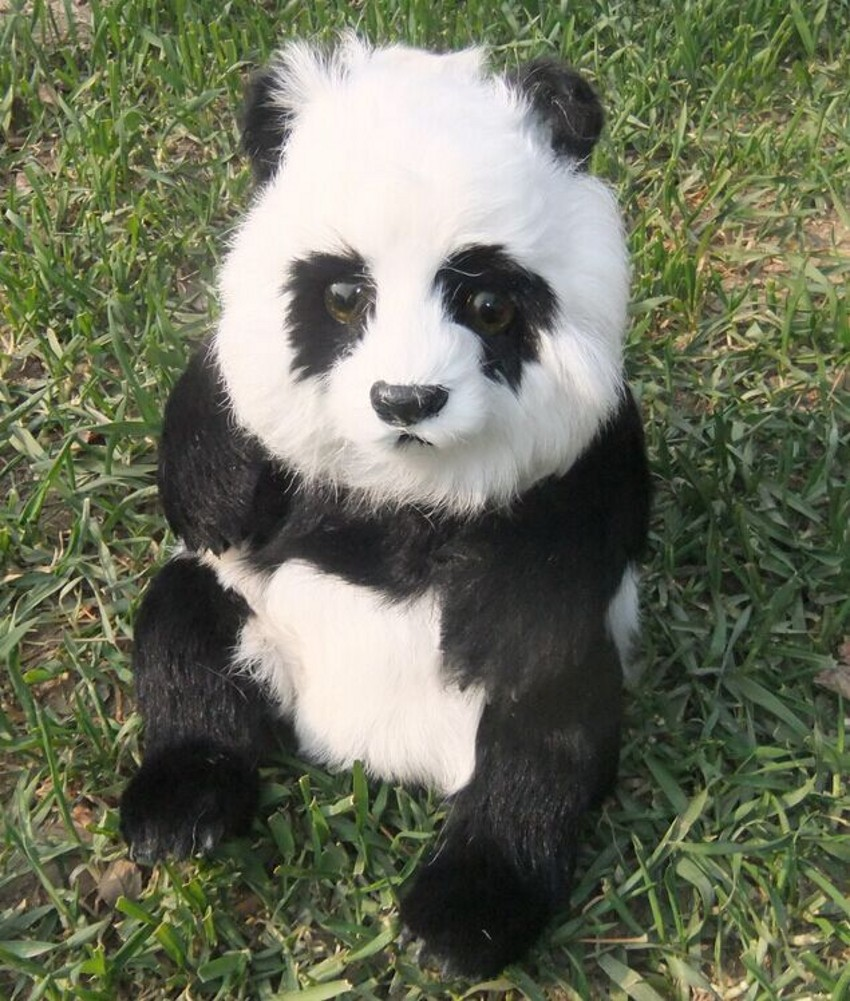 WYZHY New Year Creative Gifts Simulation Fur Animal Simulation Panda Sex Friends Children Gifts 31CM 22CM 31CM in Real Life Plush from Toys Hobbies