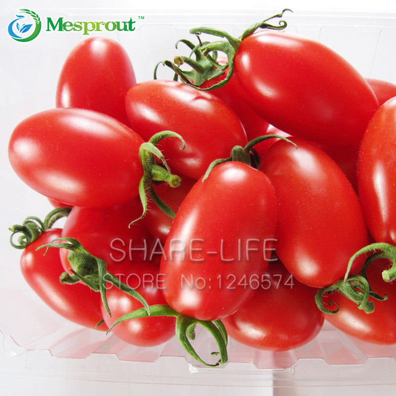 100pcs red cherry tomatoes seed balcony fruits vegetables for How to grow cherry tomatoes from seeds