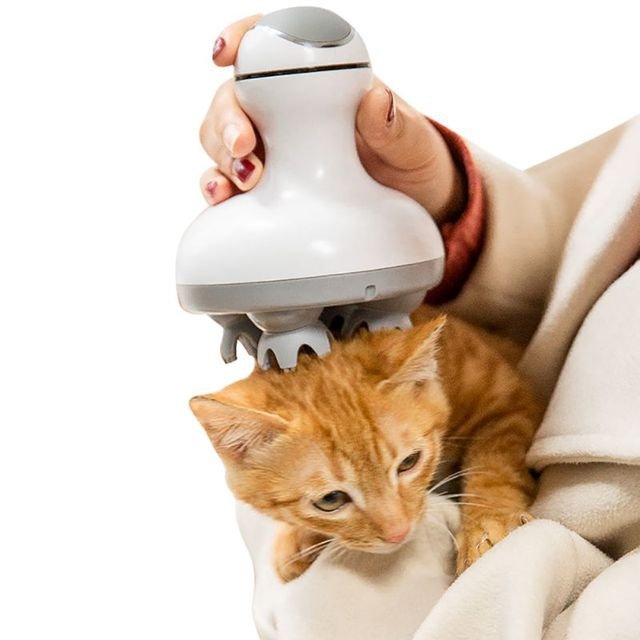 Pet Intelligent Cats Automatic Rotate Waterproof Electric Dragon Claw Han Charging Cat Massager 3D Head Massager Omnidirectional 2