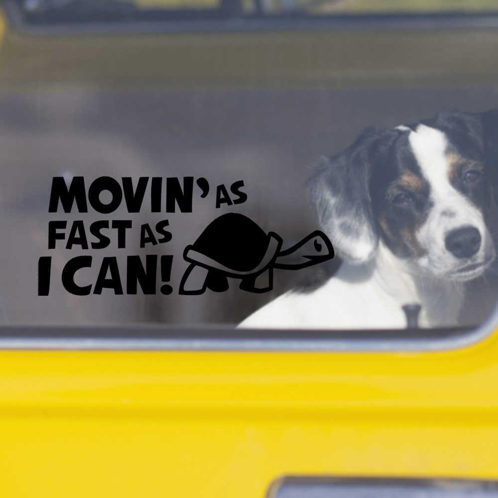 Mobil Stiker Dan Stiker Kura Kura Lucu Kepribadian Bergerak