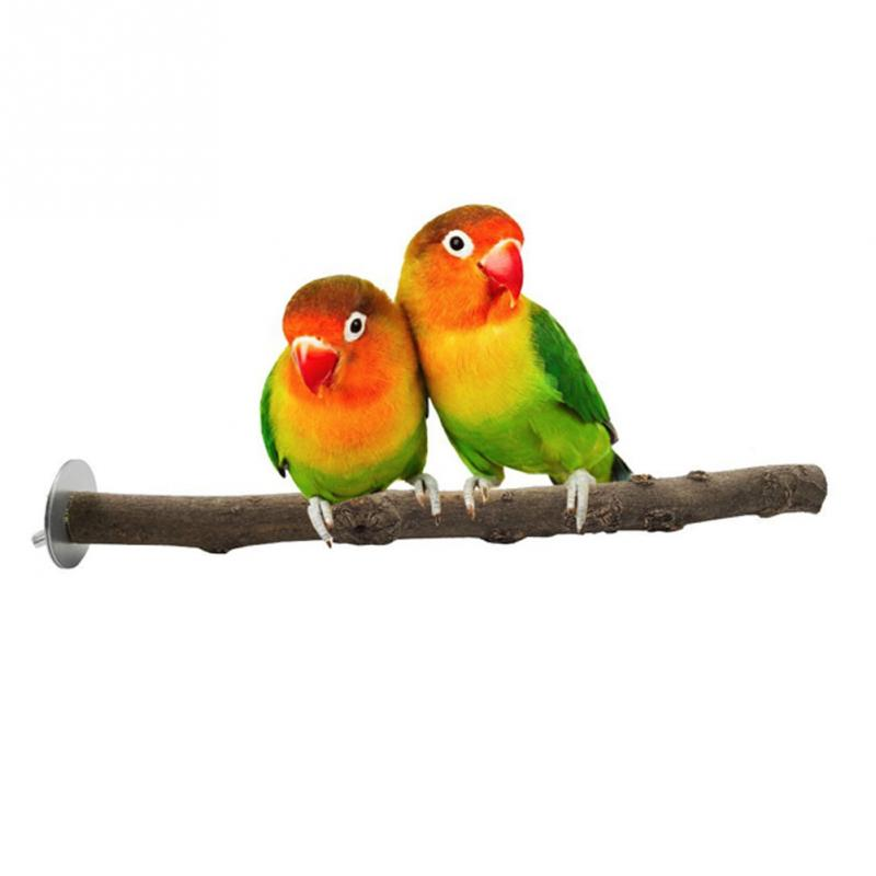 Pet Parrot Bird Cage Raw Wood Branch Fork Stand Rack Perches Toy Birds Standing Sticks