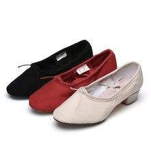 0f28c167 Nuevos zapatos de danza para profesores de lona de ballet de suela suave para  mujeres/niñas/zapatos de baile de Tango de salón 3.
