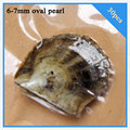 wholesale 30pcs 6-7mm freshwater oval pearl in oyster with vacuum-packed