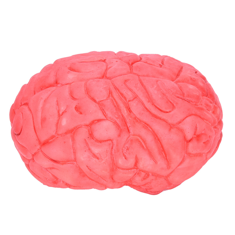 Prop Rubber Horror Fake Scary Human Brain Haunted House Organ Body Part Halloween Decoration Horror Prop Decor Gag Toys