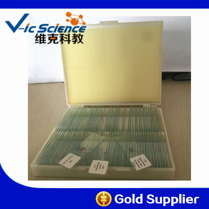 School Science Education 91pcs Biological Microscope Prepared Slides 91pcs professional glass biological microscope prepared slides lab specimens