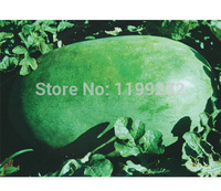 Promotion!!! Large Green Skin Type - Taiwan extremely crown - Watermelon Seeds sweet melon fruit seeds * Free Shipping