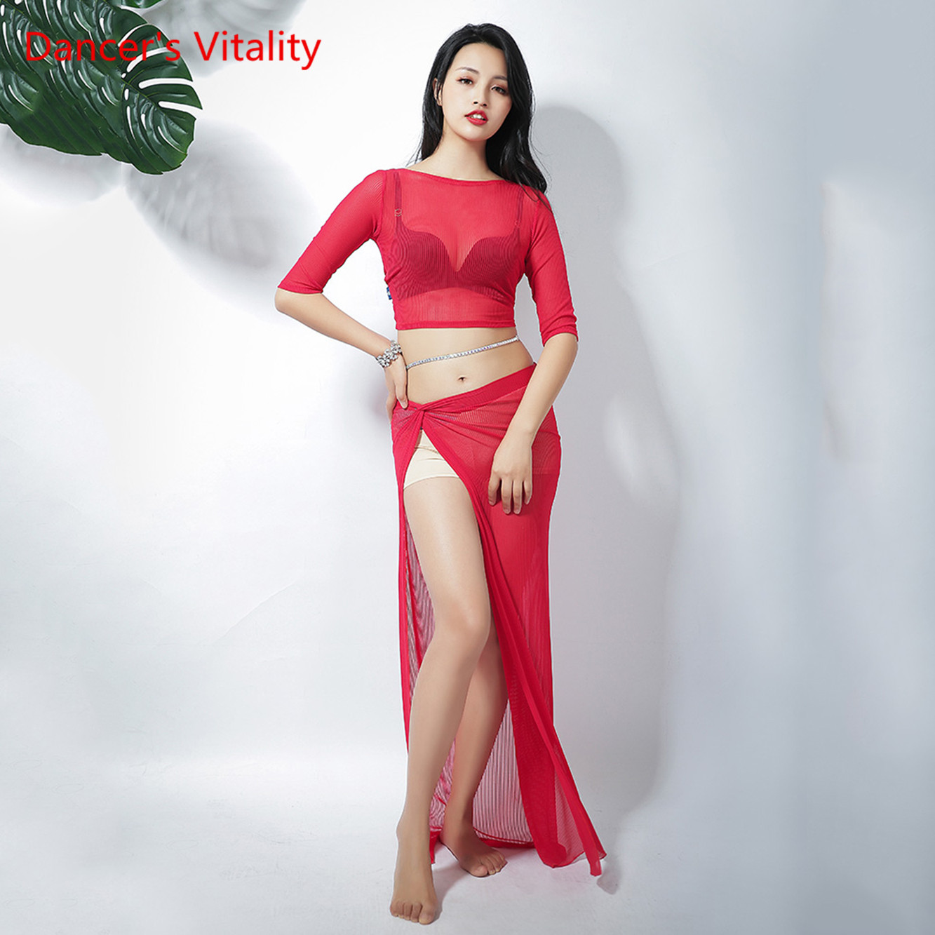 Summer New Nelly Dance Costume Oriental Dance Costumes Belly Dance Practice Clothes Top+Skirt 2pcs