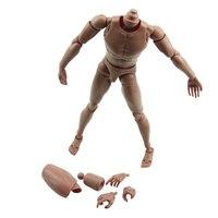 Narrow Shoulder 1 6 Scale Action Figure Nude Male Body Fit HOT Toys TTM18 TTM19