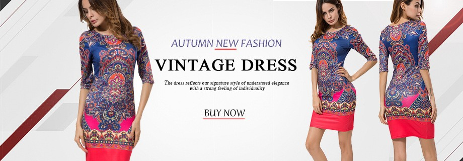 Print Women Dress