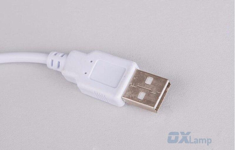 Դյուրակիր USB LED Գրասեղանի սեղանի լամպի - Ներքին լուսավորություն - Լուսանկար 3