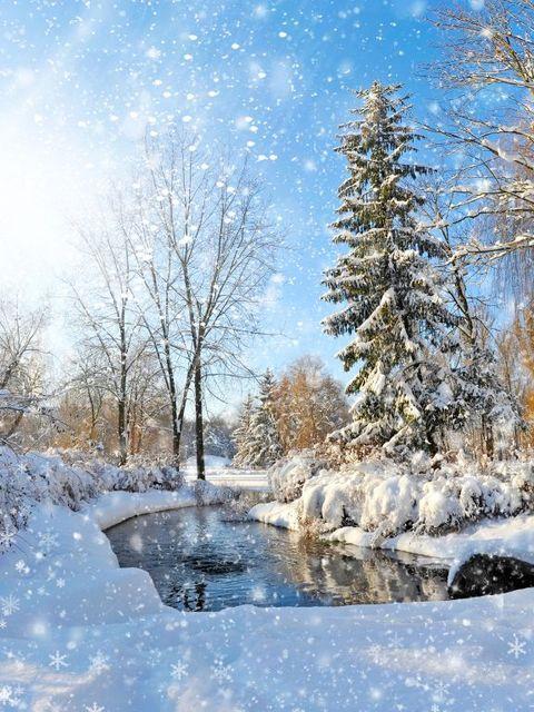 5x7ft Kerst Foto Achtergrond Sneeuw Bos Vijver Fotografie