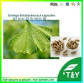 GMP certified high quality Ginkgo Biloba Extract Capsules for health care 500mg*100pcs/Bag